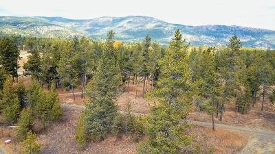 Flathead County Residential Lots & Land For Sale: 127 Pleasant Valley Road