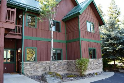 Bigfork Single Family Home Under Contract with Bump Claus: 185 Bridge Street