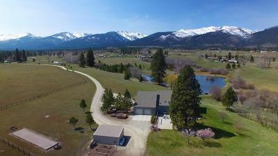 Victor Single Family Home For Sale: Eagle Feather Lane