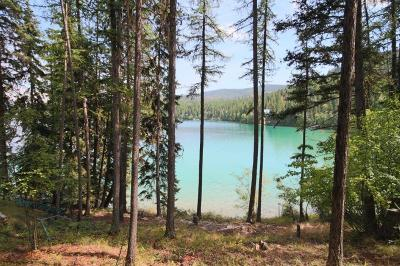 Flathead County Residential Lots & Land For Sale: Nhn Ashley Lake Road