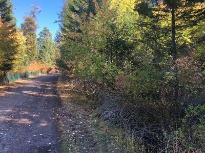 Lake County Residential Lots & Land For Sale: Nhn Lanier Lane