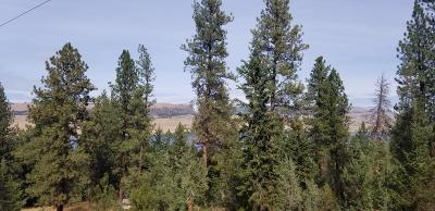 Lake County Residential Lots & Land For Sale: 28700 Cliffview Drive