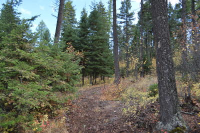 Whitefish Residential Lots & Land Under Contract Taking Back-Up : 1420 Spencer Ridge Road