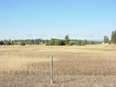 Flathead County Residential Lots & Land Under Contract Taking Back-Up : 983 Ranch Lane