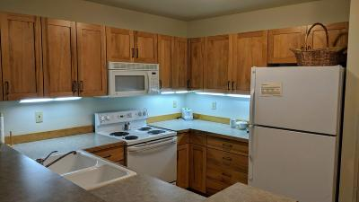 Whitefish Single Family Home For Sale: 3889 Big Mountain Road