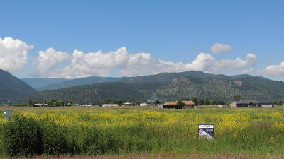 Missoula Residential Lots & Land For Sale: Lot 5 Unbridled Way