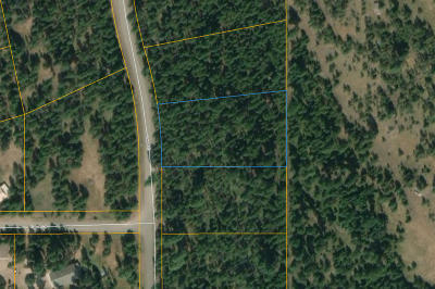Seely Lake, Seeley Lake Residential Lots & Land For Sale: Nhn Lemar Drive