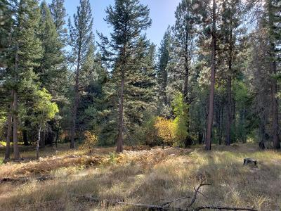 Ravalli County Residential Lots & Land For Sale: Nhn Lost Horse Road