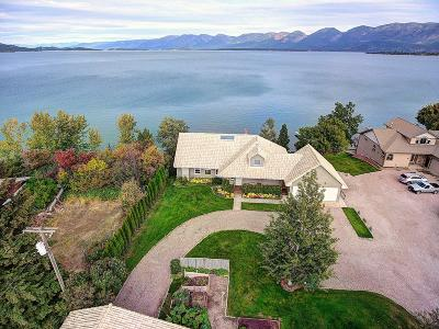 Lake County Single Family Home For Sale: 420 Shoreline Drive