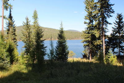 Flathead County Residential Lots & Land For Sale: 826 McGregor Lane