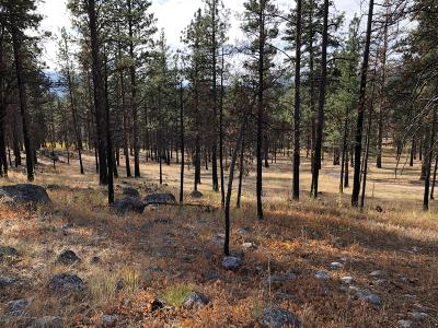 Ravalli County Residential Lots & Land For Sale: 1101 Lupine Ridge Trail