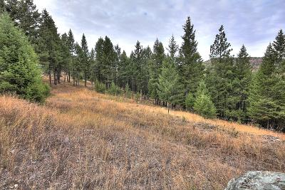 Flathead County Residential Lots & Land For Sale: 220 Elk Ranch Road