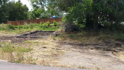 Saint Ignatius Residential Lots & Land For Sale: 338 St Marys Drive