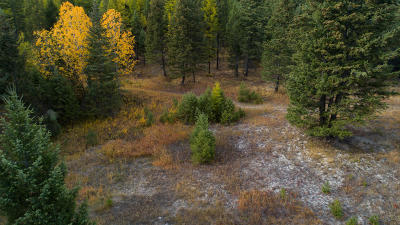 Kalispell Residential Lots & Land Under Contract Taking Back-Up : 1500 Overlook Trail