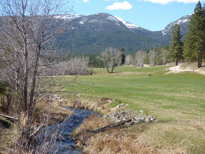 Ravalli County Residential Lots & Land For Sale: 622 Camas Creek Loop