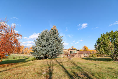 Stevensville Single Family Home Under Contract Taking Back-Up : 646 Three Mile Creek Road