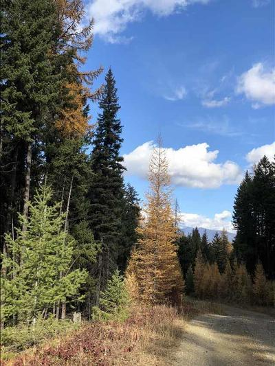 Lincoln County Residential Lots & Land For Sale: 418 Coyote Ridge Pass