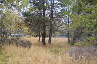 Flathead County Residential Lots & Land Under Contract Taking Back-Up : 114 Karrow Avenue