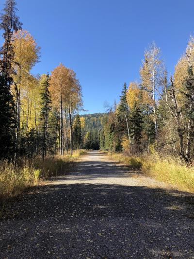 Lake County Residential Lots & Land For Sale: Nhn Almost Home Lane