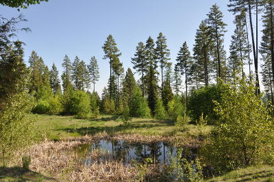 Whitefish Residential Lots & Land For Sale: 35 Painted Hills Lane