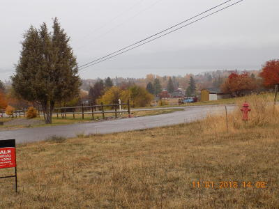 Lake County Residential Lots & Land For Sale: Nhn Miriam Way