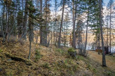 Kalispell Residential Lots & Land For Sale: 4545 Ashley Lake Road