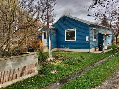 Single Family Home For Sale: 1007 Palmer Street