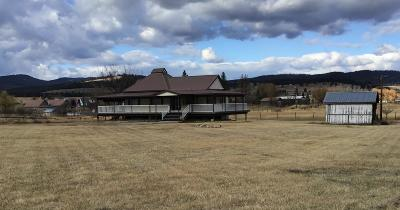 Flathead County Single Family Home For Sale: 150 Dolphin Drive