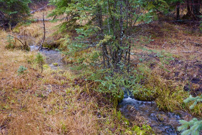 Lincoln County Residential Lots & Land For Sale: 288 Roberts Creek Road
