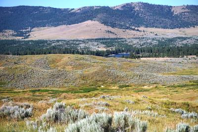 Polson MT Farm & Ranch For Sale: $1,150,000