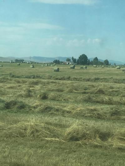 Ronan Farm & Ranch For Sale: 37261 Mink Lane