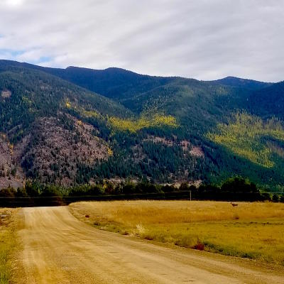 Flathead County Residential Lots & Land For Sale: 303 Roberts Road