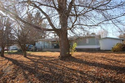 Plains Single Family Home For Sale: 609 1st Street