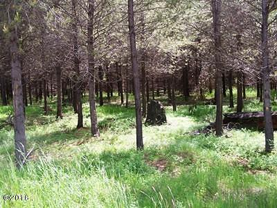 Lincoln County Residential Lots & Land For Sale: Lot 3b McGinnis Meadows Road
