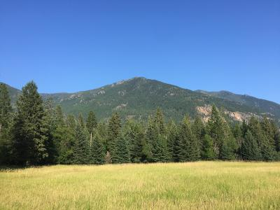Columbia Falls Residential Lots & Land Under Contract Taking Back-Up : Lucky Creek Lane