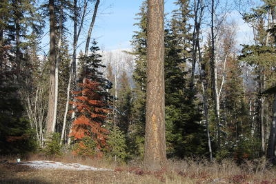 Whitefish Residential Lots & Land For Sale: 1 Merganser Court