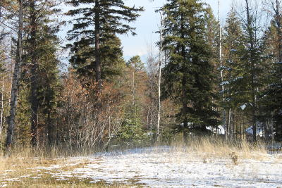 Whitefish Residential Lots & Land For Sale: 324 Haugen Heights