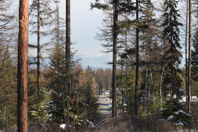 Whitefish Residential Lots & Land For Sale: 316 Haugen Heights
