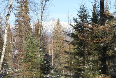 Flathead County Residential Lots & Land For Sale: 308 Haugen Heights