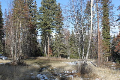 Whitefish Residential Lots & Land Under Contract Taking Back-Up : 5 Merganser Court