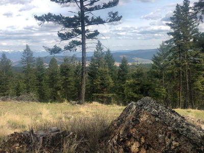 Kalispell Residential Lots & Land For Sale: Nhn Copper Road