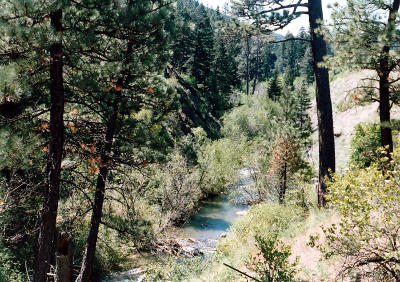 Wolf Creek  Residential Lots & Land For Sale: Nhn Hwy 200