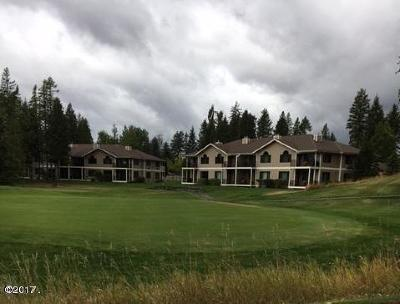 Flathead County Other For Sale: 210 Spyglass Hill Way