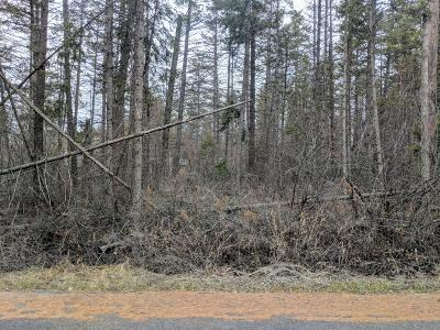 Flathead County Residential Lots & Land Under Contract Taking Back-Up