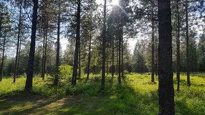 Lincoln County Residential Lots & Land For Sale: Nna Lake Creek Ranch