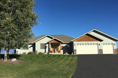 Kalispell Single Family Home For Sale: 134 Ashley Hills Drive