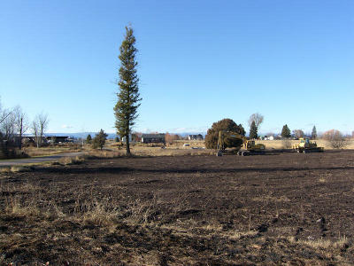 Flathead County Residential Lots & Land For Sale: Lot 2 Foxtail Drive