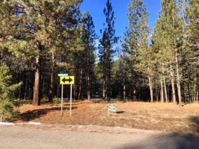 Alberton, Saint Regis, Huson, Heron, Noxon, Paradise, Superior, Thompson Falls, Trout Creek Residential Lots & Land For Sale: Nhn River Ridge Lane East
