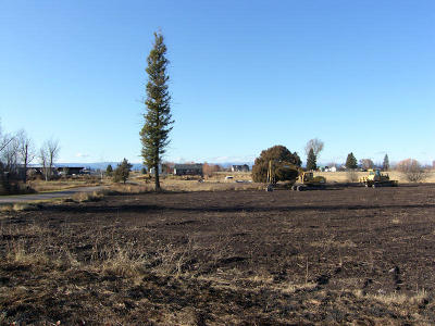 Kalispell Residential Lots & Land For Sale: Lot 44 Foxtail Drive
