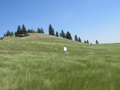 Missoula County Residential Lots & Land For Sale: Nhn Conniption